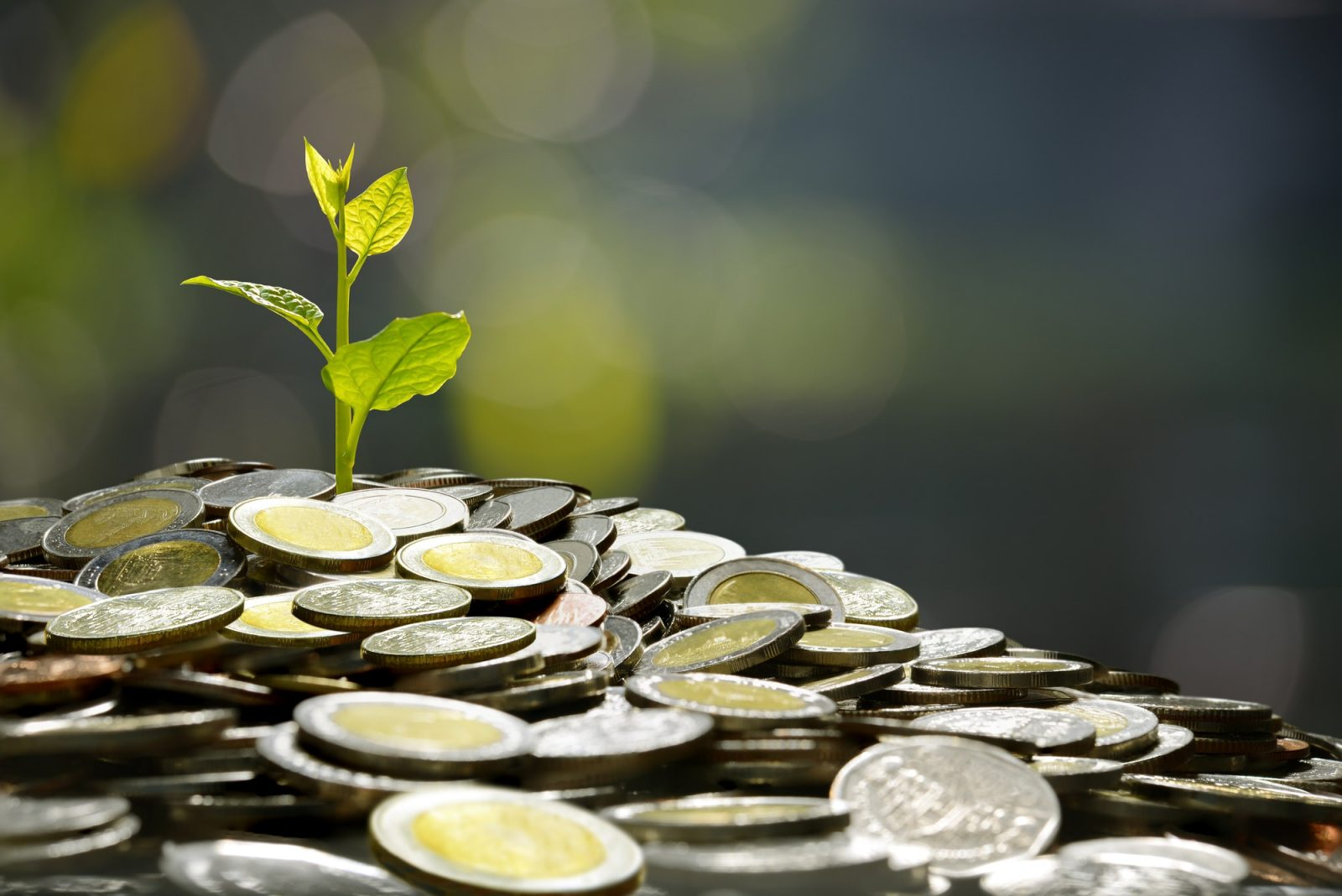 business, saving, growth, economic concept